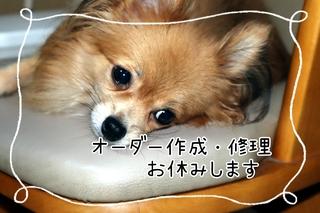 21-10-01-14-26-36-889_deco.jpg